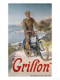Griffon, circa 1910 Giclee Print by Hugo F, D'alesi