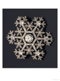 A Diamond and Platinum-Mounted Snowflake Brooch, circa 1908-1913 Posters by Carl Faberge