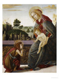 The Madonna and Child with the Young Saint John the Baptist in a Landscape Posters by Sandro Botticelli