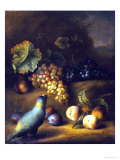 A Parrot with Grapes, Peaches and Plums in a Landscape Premium Giclee Print by Tobias Stranover