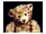 Close Up of a Steiff &quot;Dual&quot; Mohair Teddy Bear, C, 1926 Giclee Print by Steiff 
