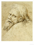 The Head of a Bearded Man, Turned to the Left Looking Back, 1520 Giclee Print by Hans Hoffmann