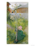 Appleblossom, 1894 Giclee Print by Carl Larsson