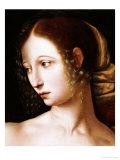 Lucretia: a Fragment Giclee Print by Jan Sanders Van Hemesen