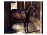 Anglo-Arabian Stallion in the Imperial Stables at Versailles Giclee Print by Théodore Géricault