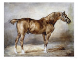 Horse in a Stable Art by Théodore Géricault