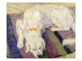 A Dog Lying Down, 1909 Giclee Print by Franz Marc