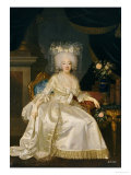 Portrait of Louise Marie Josephine de Savoie, in a White Satin Dress Giclee Print by Joseph Boze