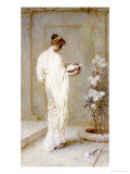 Divinely Fair, 1893 Premium Giclee Print by Henry Thomas Schafer