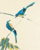 Fugle Plakater af Aurore De La Morinerie