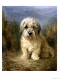 A Dandie Dinmont Giclee Print by Lilian Cheviot