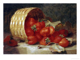 Strawberries in a Wicker Basket on a Ledge, 1895 Prints by Eloise Harriet Stannard