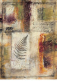 Fern Abstract Prints by Jane Bellows
