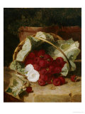 Raspberries in a Cabbage Leaf Lined Basket with White Convulus on a Stone Ledge, 1880 Posters by Eloise Harriet Stannard