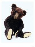 Mr. Teddy Bear Black, a Rare Black Steiff Bear, circa 1912 Gicléedruk van  Steiff