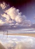 Beach, Panama Poster par Art Wolfe
