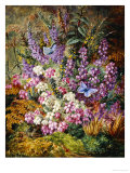 Blue Butterflies and Wildflowers, 1878 Reproduction procédé giclée par Albert Durer Lucas