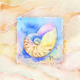 Nautilus Prints by Paul Brent