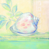 Tranquil Seashells I Posters by Pamela Gladding