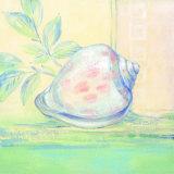 Tranquil Seashells I Posters by Pamela Gladding