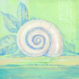 Tranquil Seashells III Poster by Pamela Gladding