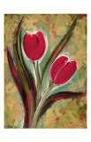 Flores silvestres: tulipn Lmina gicle por Marcella Rose