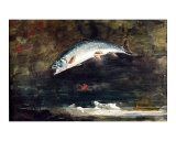 Jumping Trout Giclee Print by Winslow Homer