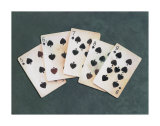 Straight Flush Print by Lisa Danielle