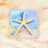 Starfish Art by Paul Brent