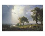 California Spring, 1875 Poster af Albert Bierstadt