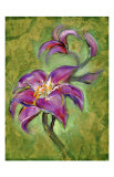Lily Giclee Print by Marcella Rose