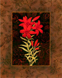 Damask Lily Poster by Paul Brent