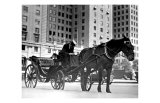 Carriage in Central Park, New York Giclee Print