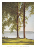 Sunlit Trees II Prints by John Folchi