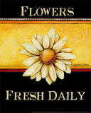 Flowers Fresh Daily Prints by Kimberly Poloson