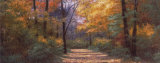 Autumn Road Panel Prints by Diane Romanello