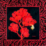 Sea Fan II Prints by Paul Brent