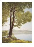 Sunlit Trees I Print by John Folchi
