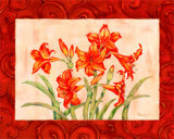 Linen Scroll Amaryllis Prints by Paul Brent