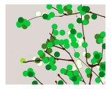 Green Cherry blossom Photographic Print by Estela Lugo