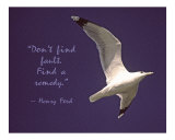 Don't Find Fault Photographic Print