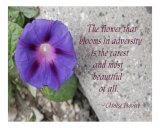 Adversity Photographic Print by Scott Kuehn