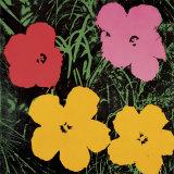 Les fleurs, 1964 (rouge, rose et jaunes) Affiches par Andy Warhol