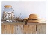 Still Life with Seashells Prints by Daniel Pollera
