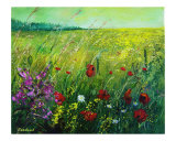 Red Poppies Giclee Print by Pol Ledent