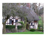 Stratford Cottage Photographic Print by Meesha Marie