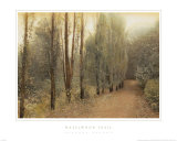 Hazelwood Trail Prints by Barbara Kalhor