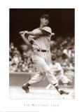 Ted Williams, 1946 Posters
