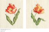 Chantilly Stripe Prints by Judy Shelby