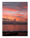 Dawn Awakening Photographic Print by Onj 